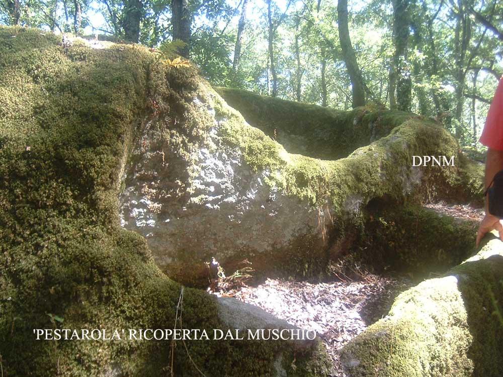I misteri dei sacri boschi di bomarzo for All origine arredi autentici